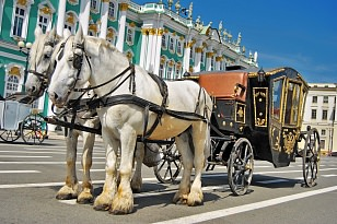Horse and carriage ride Exclusive tour